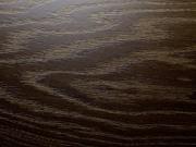 Ламинат Дуб конго EPI Alsafloor Osmoze O140 33 класс цена СПб Франция