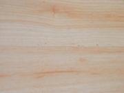 Ламинат цена и качество EPI Wood Clic Кокосовое дерево 507