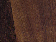 Массивная доска СПб купить Jungle Wood Венге